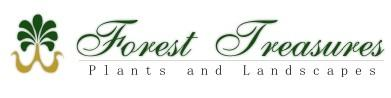 Webs Design | Company: Forest Treasures